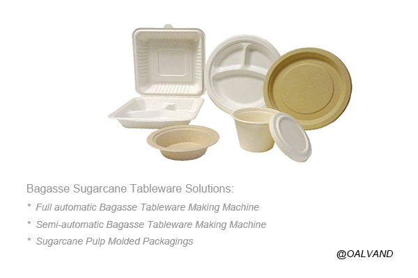 Bagasse Pulp Molding Solutions