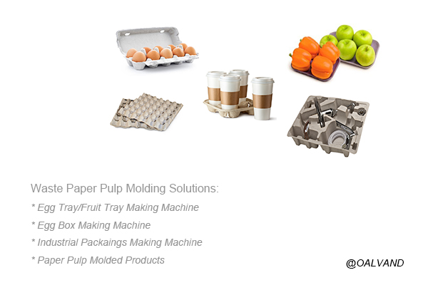 Waste Paper Pulp Molding Solutions